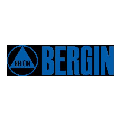 Bergin Logo