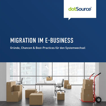 Whitepaper Migration im E-Business